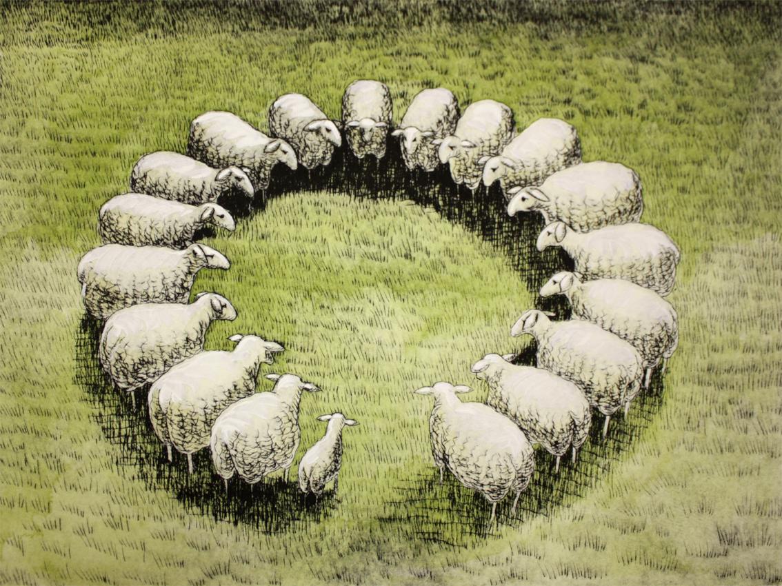 Schafkreis L 3/10, Kaltnadelradierung handcoloriert, 40 x 30 cm auf ca. 50 x 40 cm Büttenpapier, 300 €
