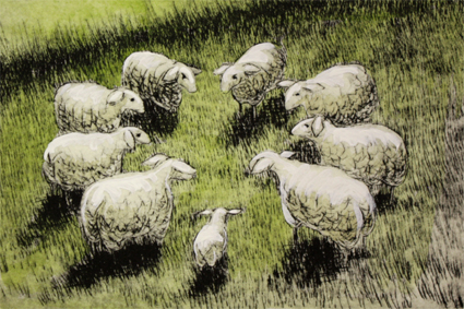 Schafkreis S 6/20, Kaltnadelradierung handcoloriert, 15 x 10 cm auf ca. 27 x 19 cm Büttenpapier 80 €