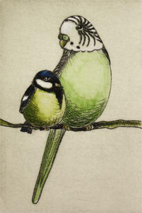 Meise und Sittich 5/20, Kaltnadelradierung handcoloriert, 10 x 15 cm auf ca. 19 x 27 cm Büttenpapier 80 €