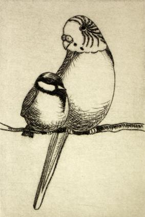Meise und Sittich 11/20, Kaltnadelradierung, 10 x 15 cm auf ca. 19 x 27 cm Büttenpapier 60 €