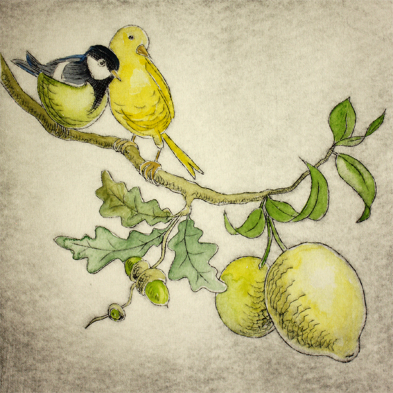Zitroneneiche 6/20, Kaltnadelradierung handcoloriert, 20 x 20 cm auf ca. 26 x 39 cm Büttenpapier, 100 €